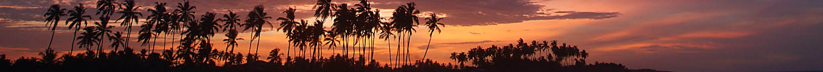 Benin, Grand Popo, red sunset palms, Banner.