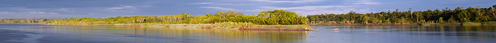 Headland in the Maranon River, mellow morning light, Peruvian jungle - Banner
