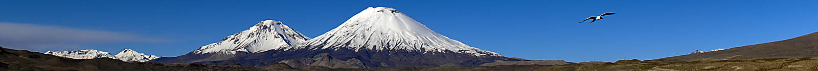 Parinacota, Pomerape, volcanoes, Chile - Banner