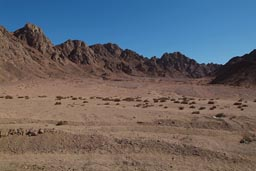 Sinai, mountains, desert.