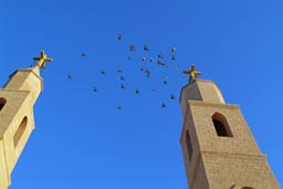Pigeons between church towers of Saint Anthony monastery, Egypt.