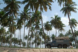 Ghana Land Rover 6x6 on beach near Princes Town, Palm Trees.