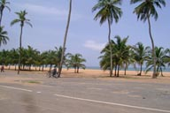 Lome, Togo, seafront, palms on beach.