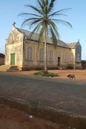 A church, a palm, a goat, village Togo.