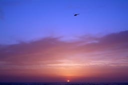 Tel-Aviv beach-sunset-helicopter.