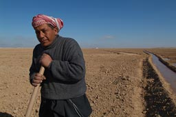 Mohamed digs the irrigation channels and ditches and walls in the Syrian desert.