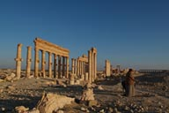 Prayer in Palmyra.