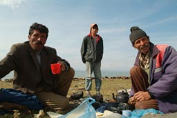 Shepherds on lake Cildir Golu, cows, invite for tea. Turkey.