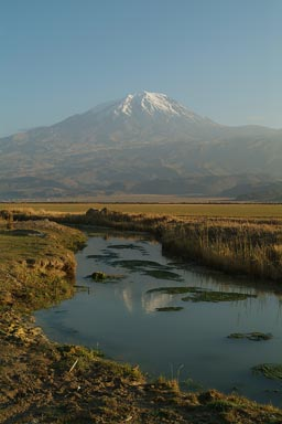 Mount Ararat, morning.