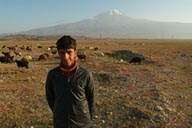 Shepherd, Mount Ararat, sheep.