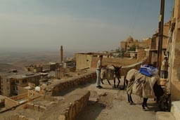 Horses and traders, Mardin hill top.