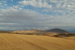 Fields, Anatolia, near Malatya, Turkey.