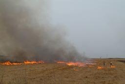 Fields are burning around Diyarbakir.