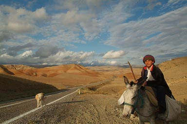 Shepherd on donkey, central Anatolia near Mantalya, Turkey, a dog on road, blue sky some clouds. Anatolian landscape.