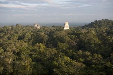 Tikal receives a bit of late sunset light.