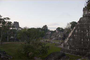 Tikal is huge.