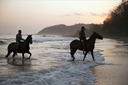 Riders take horses in ocean, cambutal, Panama.