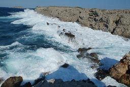 Wild Sea Cyprus East End.