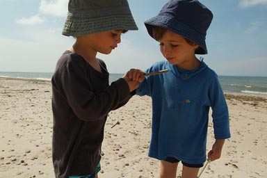 Boys in hats, watching a bug on a stick.