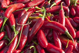 Red Hot Mexican Chili Peppers.