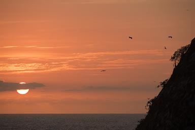 Sunset, birds, island near Puerto Vallarta.
