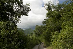 Beyond La Realidad, rains threaten. Chiapas, the Lacandon jungle.