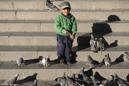 La Paz, Plaza Murillo, boy and pigeons.
