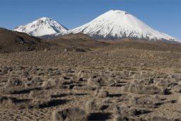 Snowcapped Pomerape and Parinacota volcanoes.