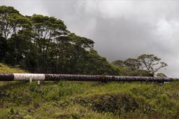 Chevron, Texaco pay repairs, Ecuador pipeline.