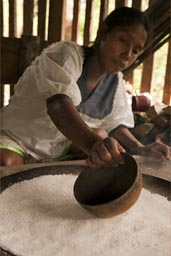 Spread the yuca rasple on stove. The making of yuca bread in Ecuador jungle, by Indigena woman.