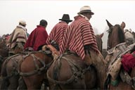 Salinas fiesta of horses, Ecuador. Men in ponchos and hats on horses.