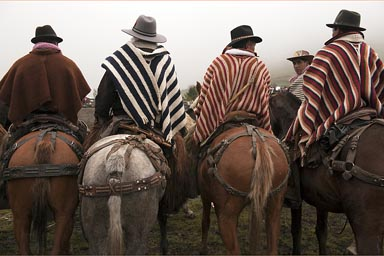 Four ponchos, four hats, Indigenas fiesta of horses, Salinas de Guaranda, the Ecuadorian Andes.