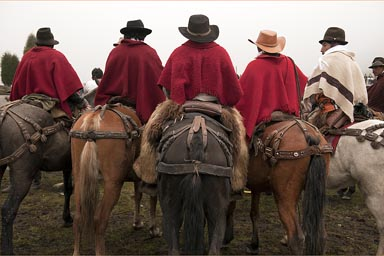 Five riders in ponchos. The Ecuadorian Andean mountains.