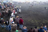 Rodeo in Salinas, Ecuador.
