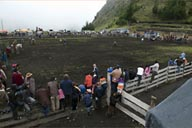 The rodeo ground in foggy Salinas on 3,600m, Ecuadorian Andean mountains..