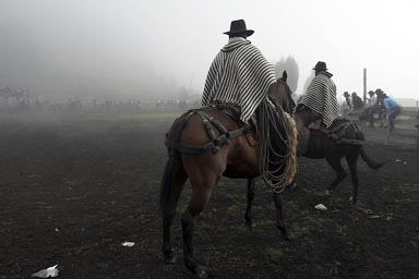 Ponchos on horses in fog, Ecuadorian Andean mountains. Salinas de Guaranda.