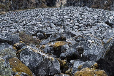 Cordillera Blanca, field of black boulders.
